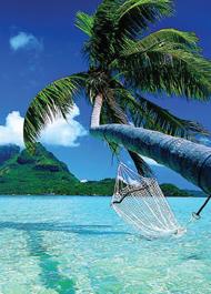 hammock_water
